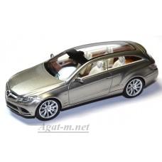 Масштабная модель Mercedes-Benz Fascination Concept 2010